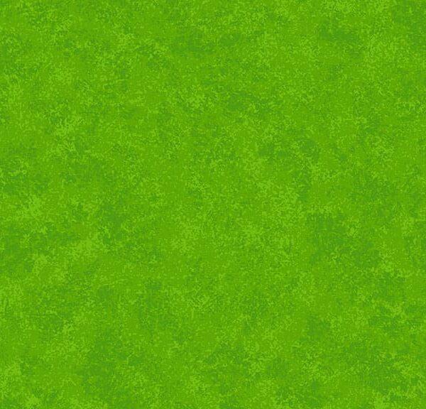 Spraytime 2800G02 Lime Green Blender fabric by Makower