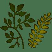Sizzix Garden Greens 659436 Leaves Bigz Die by Tim Holz